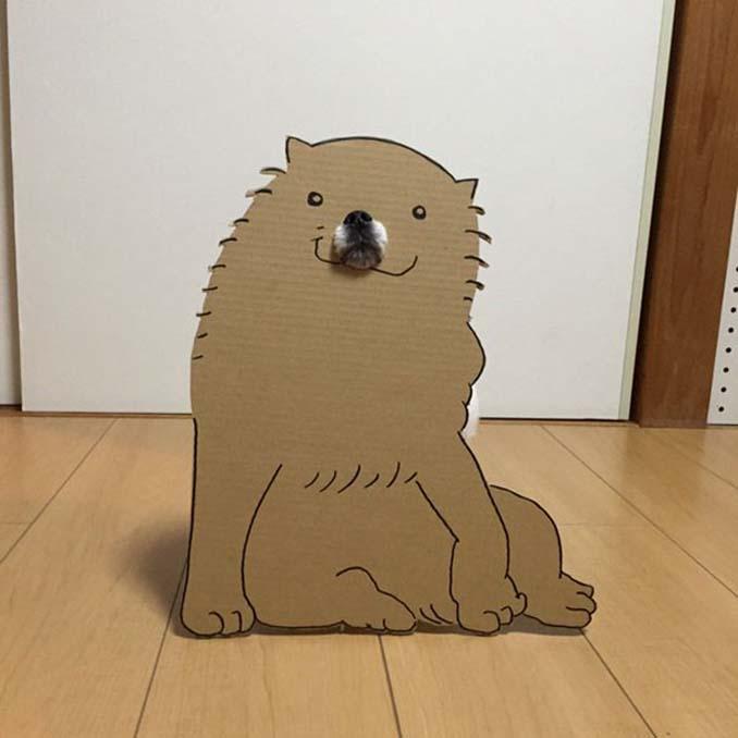 Γιαπωνέζα δημιουργεί ξεκαρδιστικά σχέδια από χαρτόνι για τον σκύλο της (10)