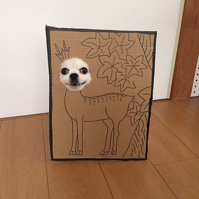 Γιαπωνέζα δημιουργεί ξεκαρδιστικά σχέδια από χαρτόνι για τον σκύλο της (18)