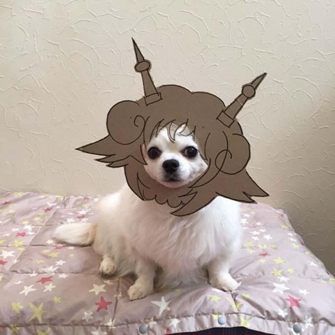 Γιαπωνέζα δημιουργεί ξεκαρδιστικά σχέδια από χαρτόνι για τον σκύλο της (24)