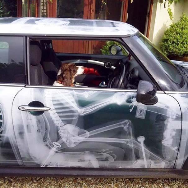 Ιδιοκτήτες αυτοκινήτων που δεν δίστασαν να πρωτοτυπήσουν (26)