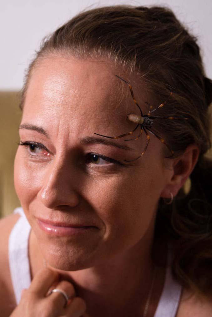 Lisa Van Kula Donovan (8)