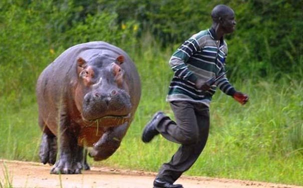 Μόνο στην Αφρική #6 (7)