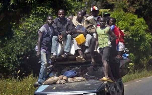 Μόνο στην Αφρική #6 (12)