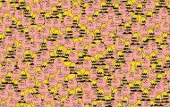Μπορείτε να εντοπίσετε τον Pikachu; (3)