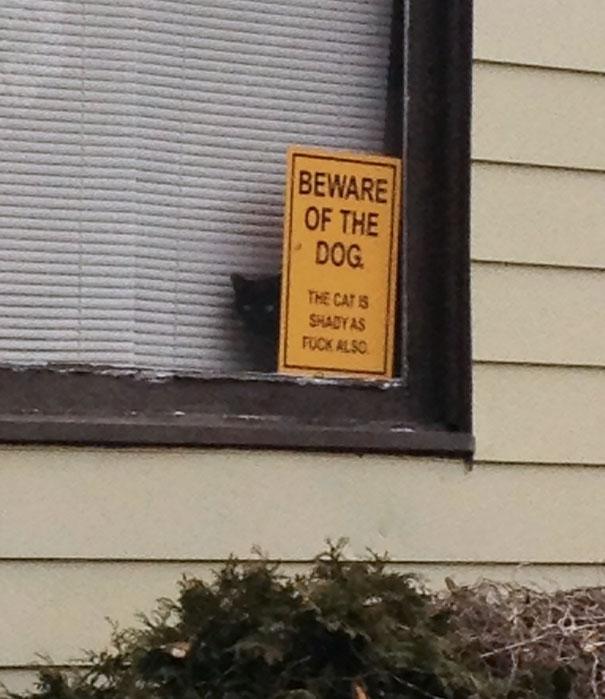 Όταν οι πινακίδες «Προσοχή σκύλος» αποκτούν κωμική διάσταση (14)