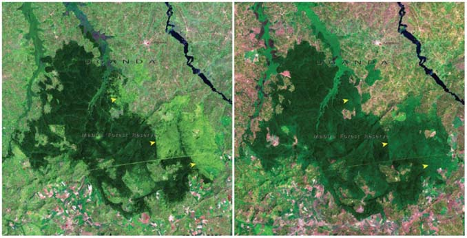 Πλανήτης Γη τότε και σήμερα: Φωτογραφίες της ΝASA (10)