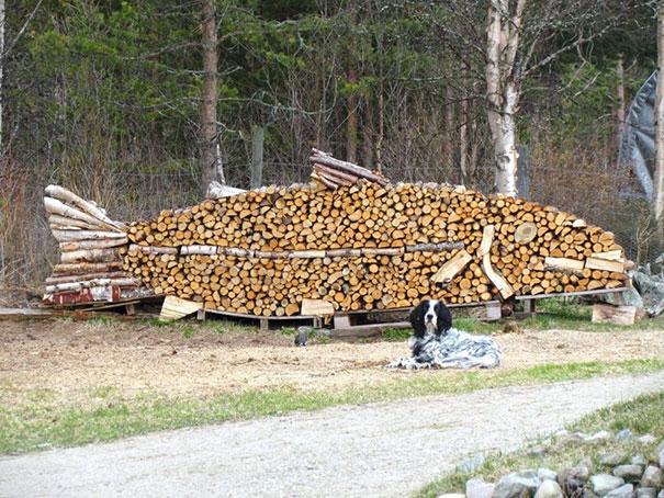 Άνθρωποι που μετέτρεψαν τις στοίβες ξύλων σε μορφή τέχνης (14)