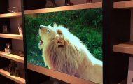 Διάφανη τηλεόραση Panasonic
