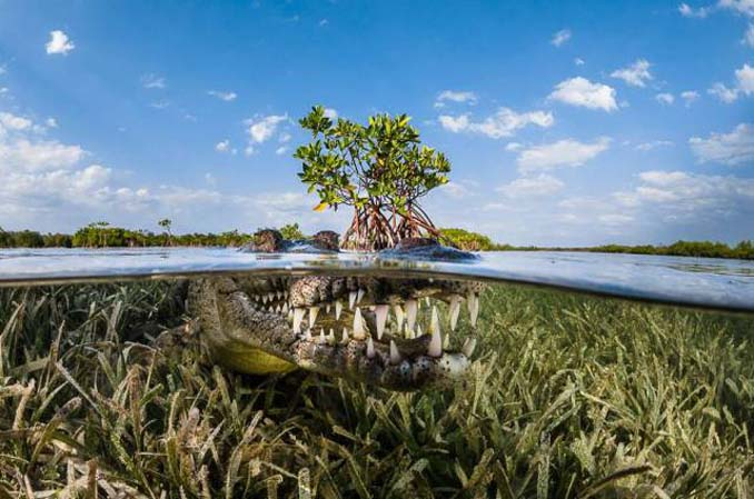 Μερικές από τις καλύτερες ταξιδιωτικές φωτογραφίες της χρονιάς (20)