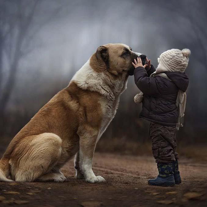 Παιδιά και ζώα από την Elena Shumilova (1)