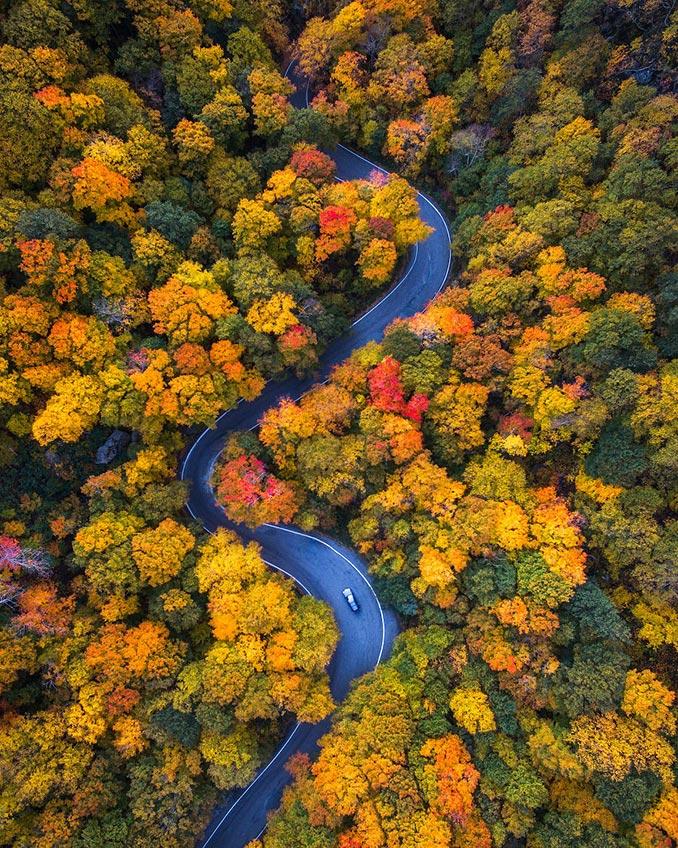 Φθινοπωρινές διαδρομές... | Φωτογραφία της ημέρας