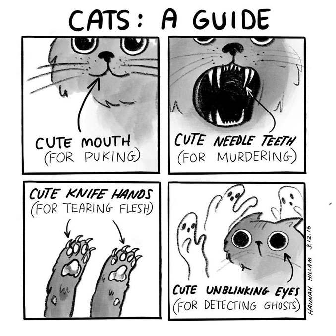 Σκιτσογράφος δείχνει πώς είναι να ζεις με γάτες (4)