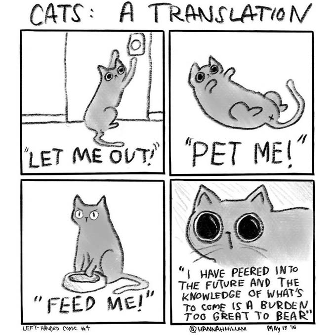 Σκιτσογράφος δείχνει πώς είναι να ζεις με γάτες (8)