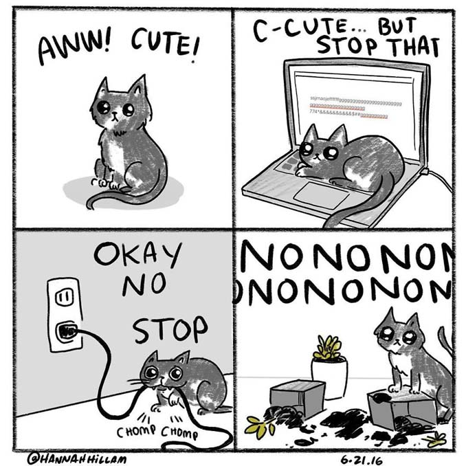 Σκιτσογράφος δείχνει πώς είναι να ζεις με γάτες (12)