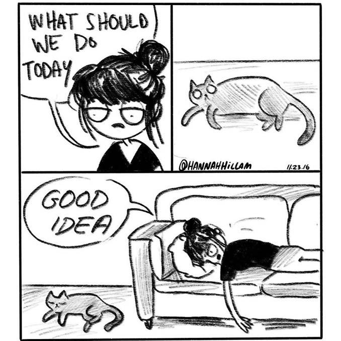 Σκιτσογράφος δείχνει πώς είναι να ζεις με γάτες (17)