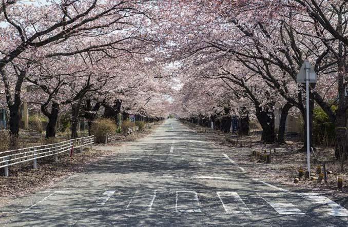 Μια σπάνια ματιά στην πόλη φάντασμα της Φουκουσίμα (16)