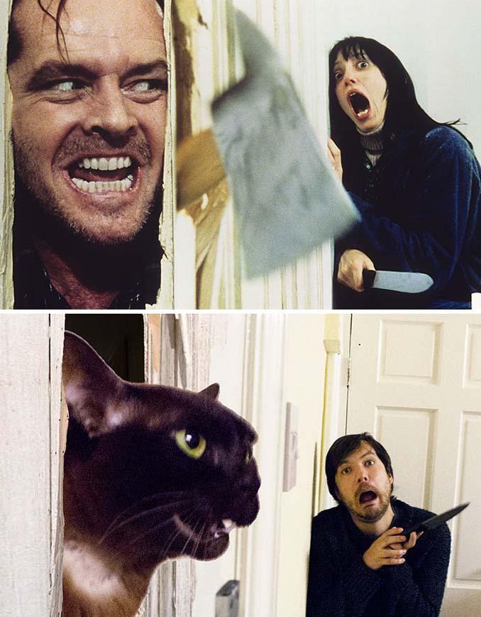 Ένας τύπος και οι γάτες του αναπαριστούν διάσημες σκηνές από ταινίες (4)