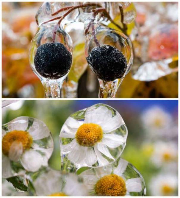 Ο χειμώνας σε 22 μαγευτικές φωτογραφίες (1)