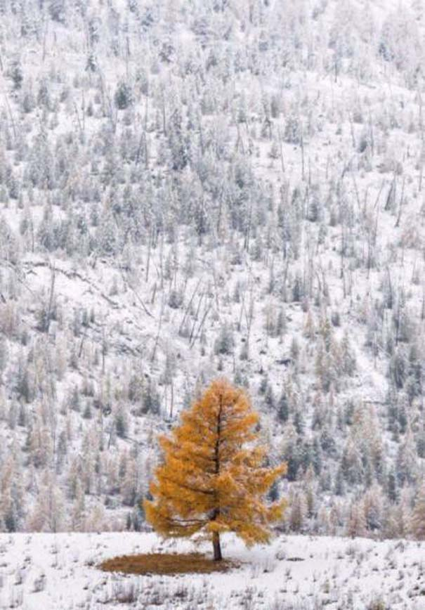 Ο χειμώνας σε 22 μαγευτικές φωτογραφίες (3)