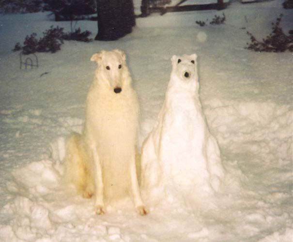 Δημιουργικοί χιονάνθρωποι που χαρίζουν άφθονο γέλιο (15)