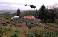 Ελικόπτερο μεταφέρει δέντρα για τα Χριστούγεννα