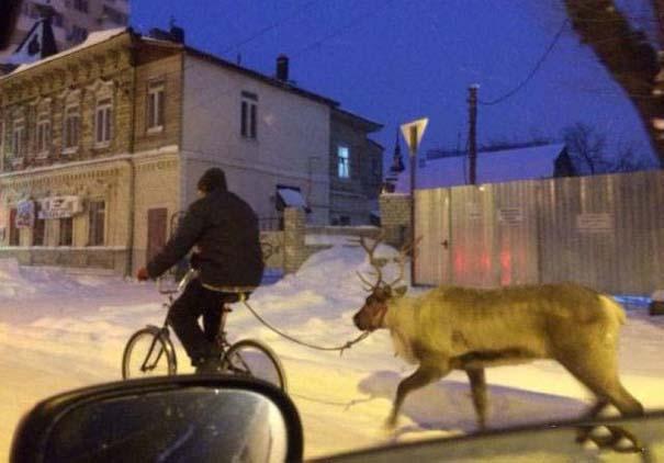 Εν τω μεταξύ, στη Ρωσία... #108 (9)