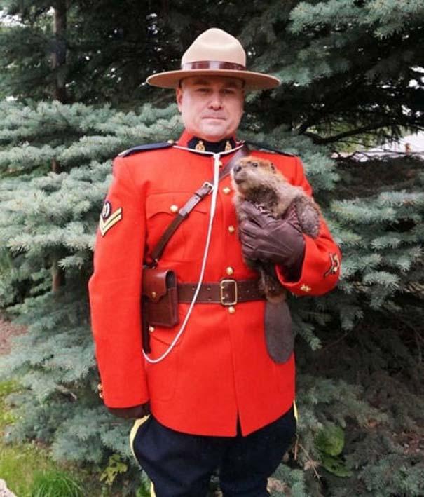Εν τω μεταξύ, στον Καναδά... #16 (10)