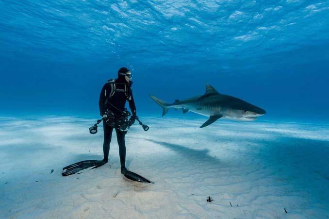 20 από τις κορυφαίες φωτογραφίες του National Geographic για το 2016 (5)