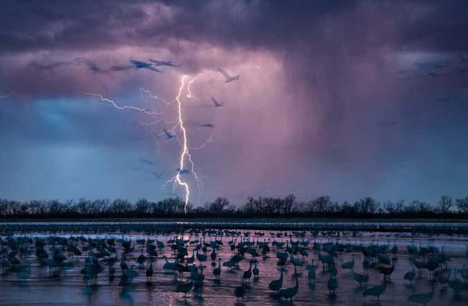 20 από τις κορυφαίες φωτογραφίες του National Geographic για το 2016 (15)