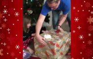 Όταν για χριστουγεννιάτικο δώρο παίρνεις μια ύπουλη γατούλα...