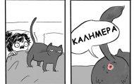 Σκιτσογράφος δείχνει πώς είναι να ζεις με γάτες