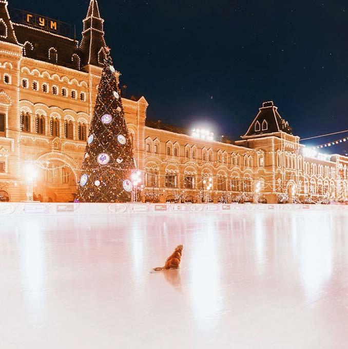 Η χειμωνιάτικη Μόσχα μοιάζει βγαλμένη από παραμύθι (6)