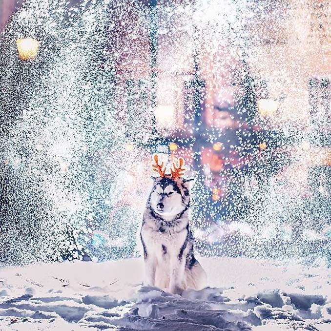 Η χειμωνιάτικη Μόσχα μοιάζει βγαλμένη από παραμύθι (31)