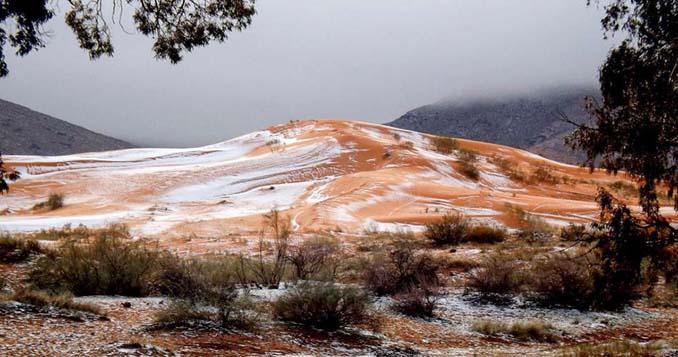 Χιόνισε στη Σαχάρα (6)