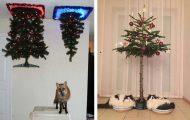 30 χριστουγεννιάτικα δέντρα που είναι ασφαλή από κατοικίδια