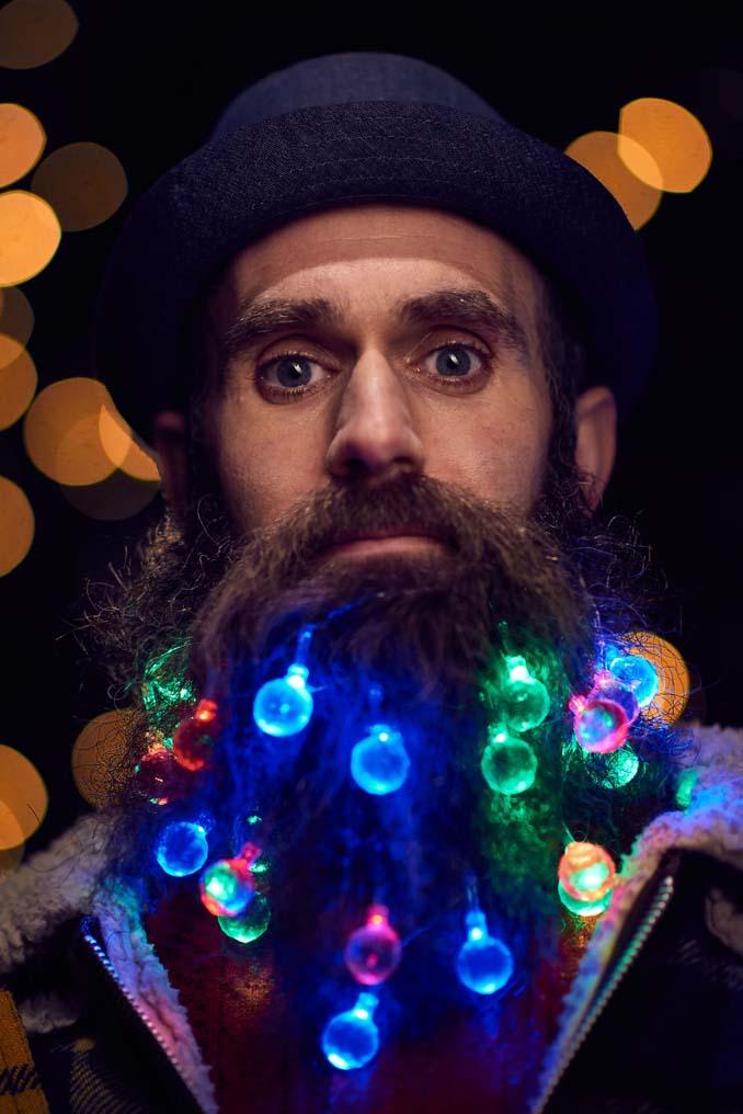 Χριστουγεννιάτικα φωτάκια για το μούσι (6)