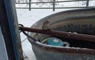 Άνδρας δίνει κυριολεκτικά ανάσα ζωής σε ένα πουλάκι που είχε παγώσει πάνω σε μεταλλικό φράχτη
