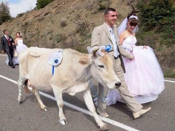 Αστείες φωτογραφίες γάμων #69 (6)