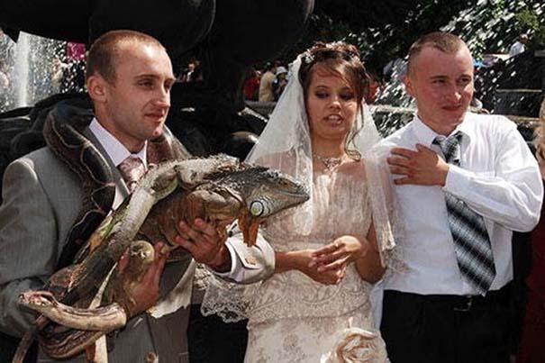 Αστείες φωτογραφίες γάμων #68 (7)