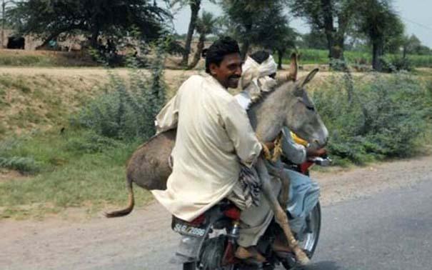 Εν τω μεταξύ, στο Πακιστάν... #3 (9)