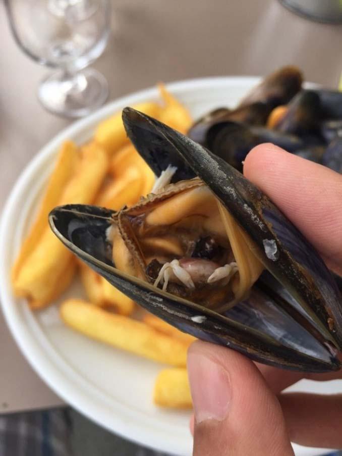 Φωτογραφίες συνηθισμένων τροφίμων που θα σας ξαφνιάσουν (11)
