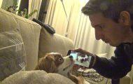 Ξυπνώντας έναν σκύλο με το ίδιο του το ροχαλητό