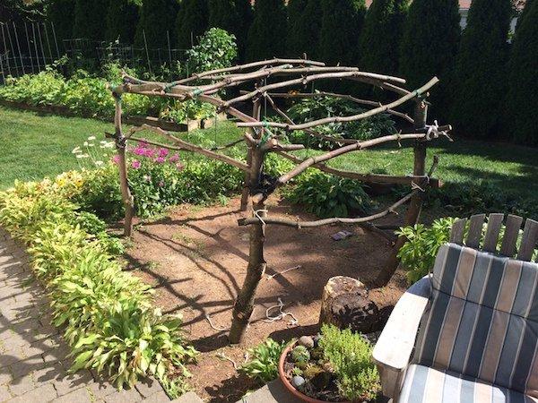 Δημιουργικός μπαμπάς μετέτρεψε ένα άρρωστο δέντρο σε παραμυθένιο κήπο για την κόρη του (9)