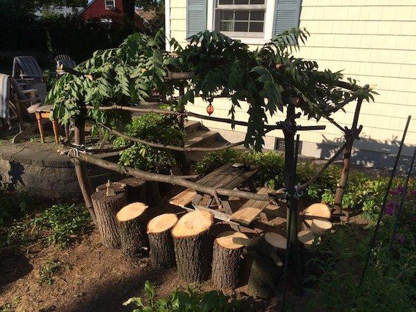 Δημιουργικός μπαμπάς μετέτρεψε ένα άρρωστο δέντρο σε παραμυθένιο κήπο για την κόρη του (14)