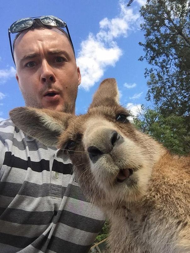Όταν τα ζώα βγάζουν selfies (7)