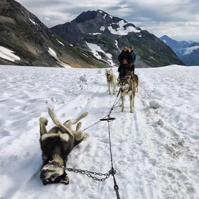 Κάπως έτσι μοιάζει ένα σκασμένο λάστιχο στην Αλάσκα... | Φωτογραφία της ημέρας