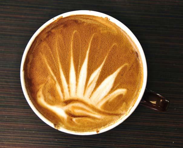 Υπέροχη τέχνη σε καφέ #12 (5)