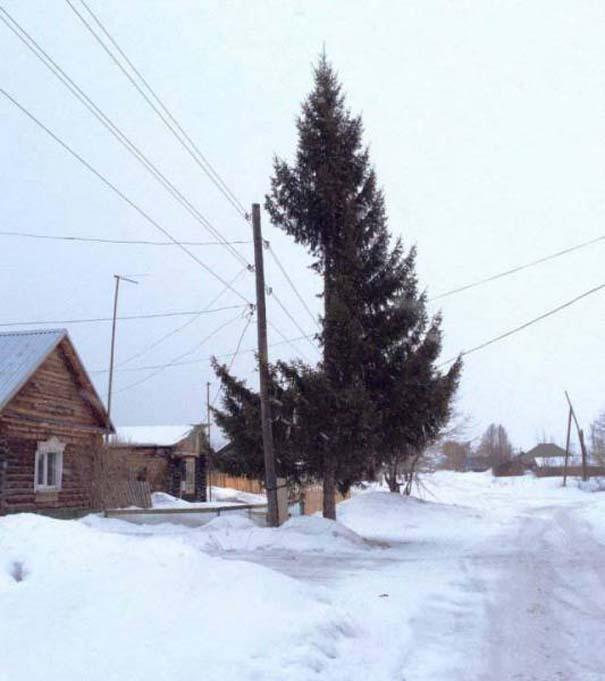 Εν τω μεταξύ, στη Ρωσία... #113 (6)