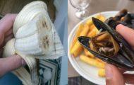 14 φωτογραφίες συνηθισμένων τροφίμων που θα σας ξαφνιάσουν
