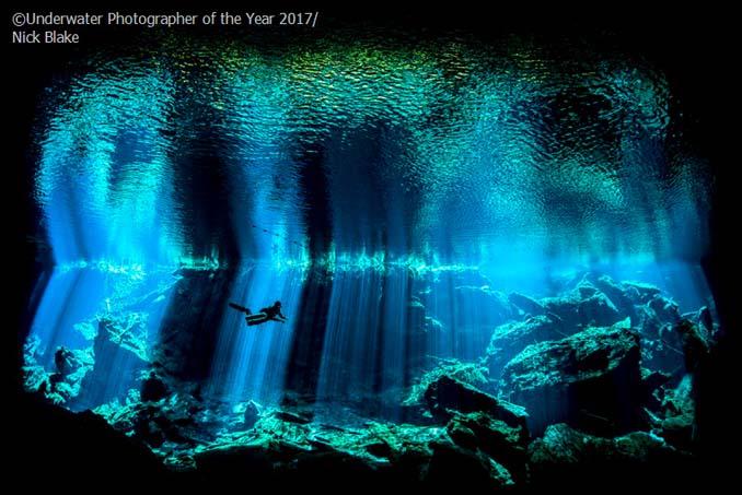 33 από τις κορυφαίες υποβρύχιες φωτογραφίες της χρονιάς (3)